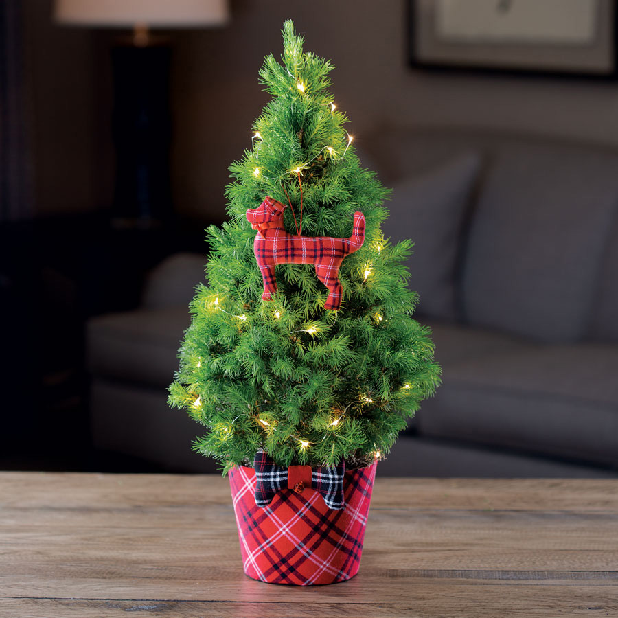 Santa Paws Christmas Tree at Wayside Gardens!